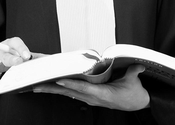 CONSEIL ET ACCOMPAGNEMENT JURIDIQUE POUR VOS LITIGES PROFESSIONNELS À CANNES