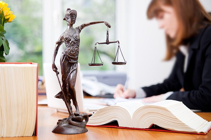 Avocate au Barreau de Grasse, Maître Petra Lavie vous assiste et vous représente dans les affaires liées au droit de la famille, du travail, de la santé, des étrangers, des animaux, de construction, immobilier, mais aussi en matière de droit pénal.
